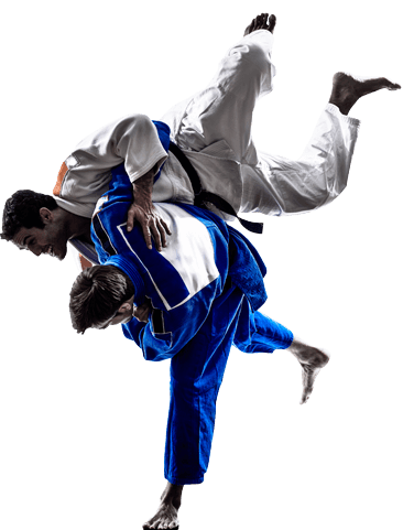 Adult Judo